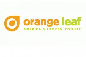 Orange Leaf Image1