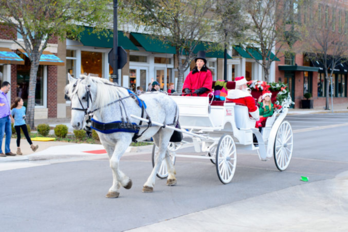 Downtown Carriage Rides