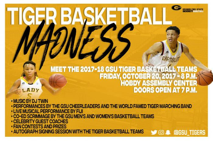 Tiger Basketball Madness