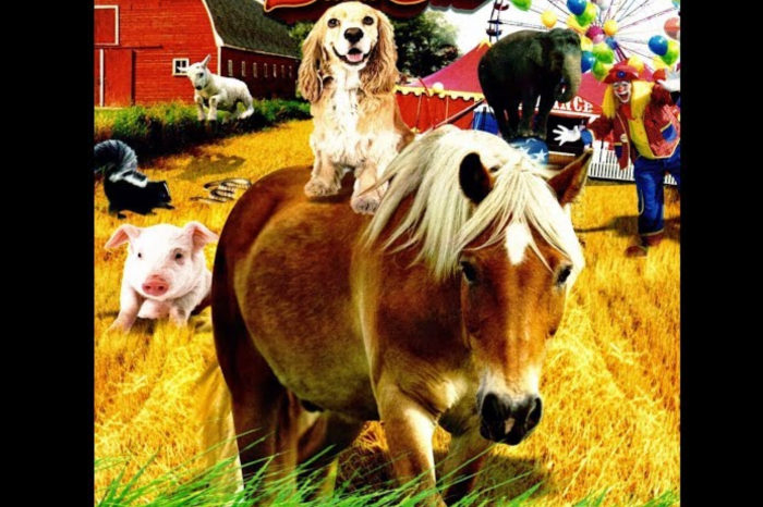 Family Movie Night: A Dog and Pony Show