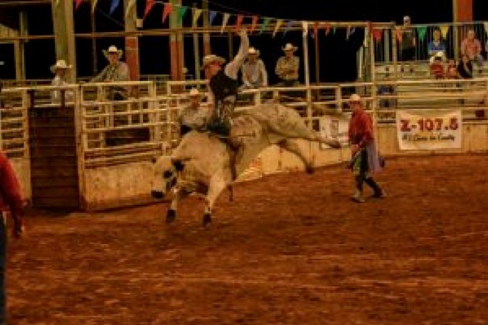 Louisiana Peach Festival: Rodeo